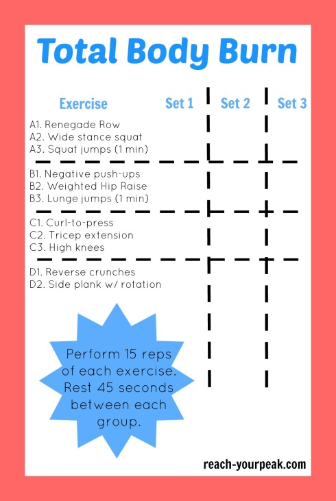 total body workout routine
